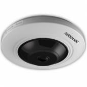 Fish-eye kameros