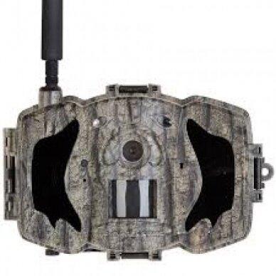Žvėrių kamera Bolymedia Bolyguard MG984G-36M MMS/GPRS 2